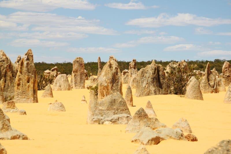 Pinnacles Western Australia royalty free stock photos