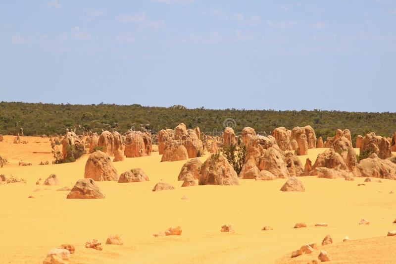 Pinnacles Western Australia royalty free stock photo