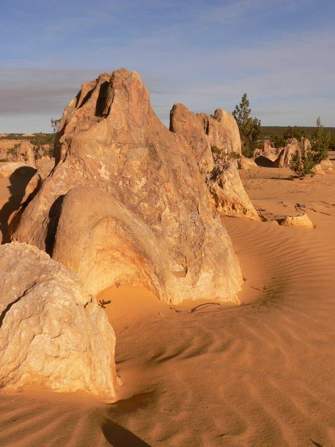 The Pinnacles, Western Australia, Australia royalty free stock images