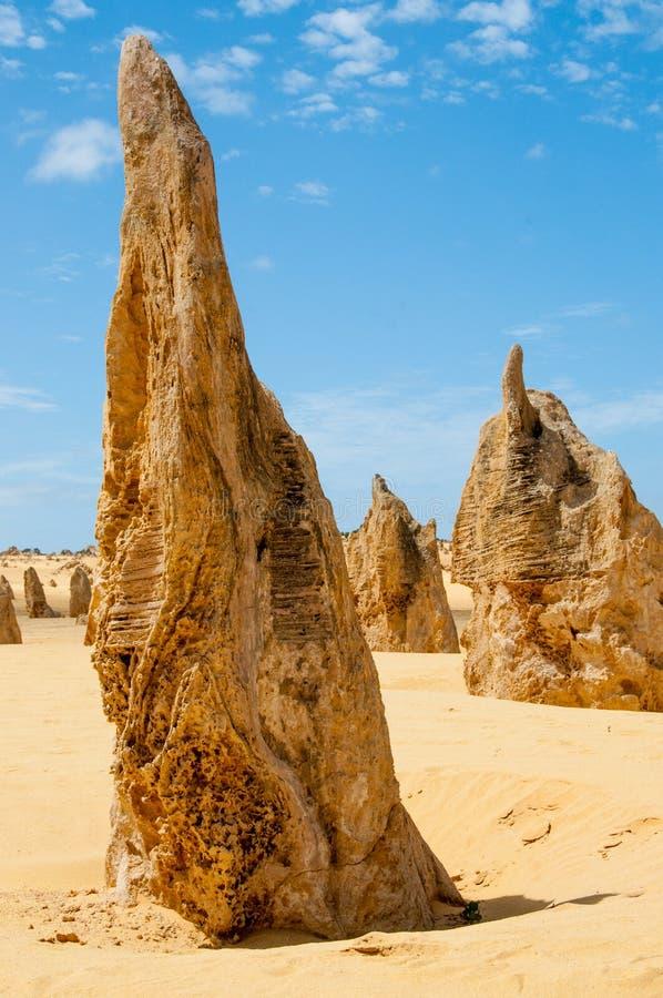 The Pinnacles, western Australian royalty free stock image