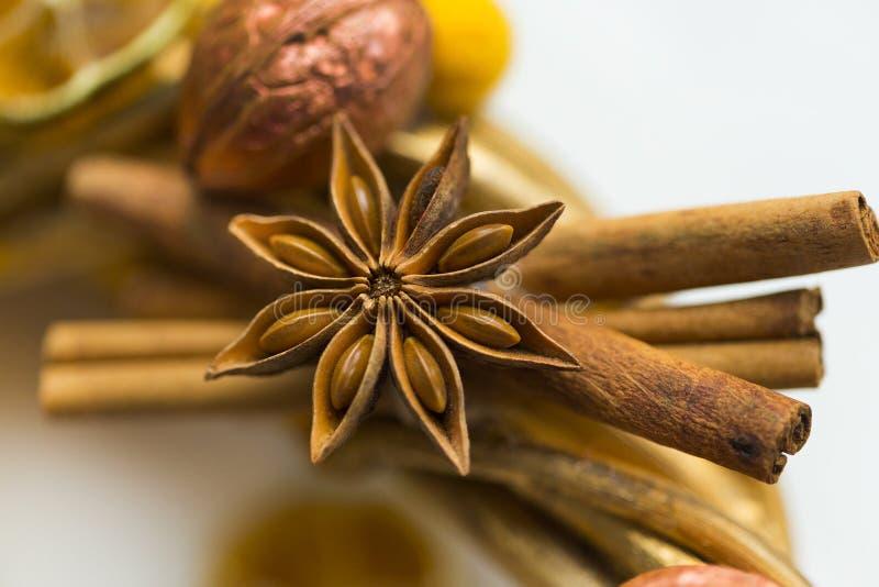 Pinnar av kanel, blommor av badian eller anis, torkade apelsiner och citroner arkivbild