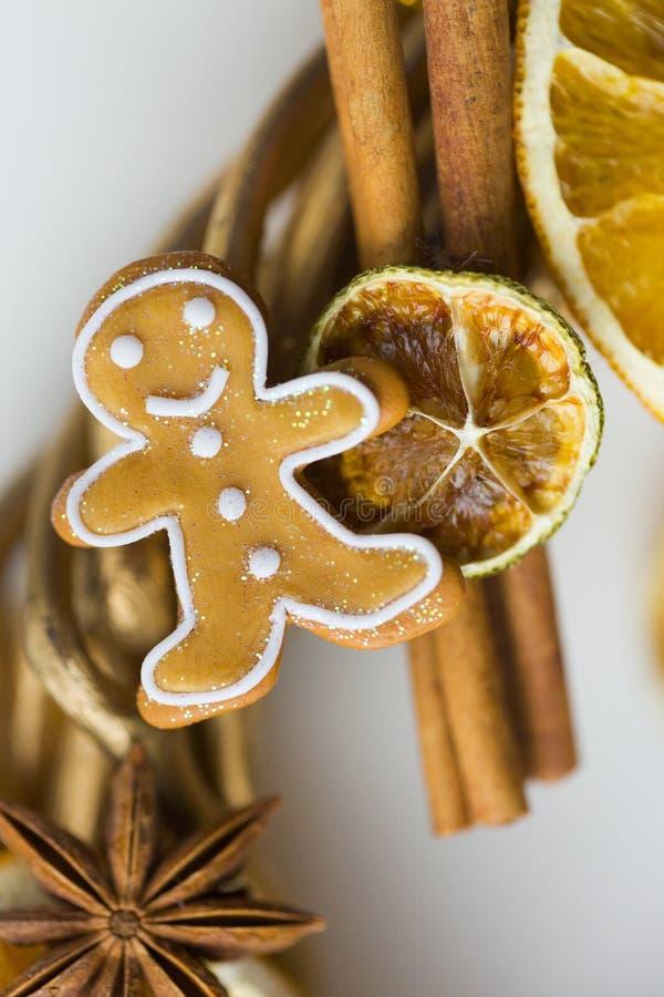 Pinnar av kanel, blommor av badian eller anis, torkade apelsiner och citroner och pepparkakamän royaltyfria bilder