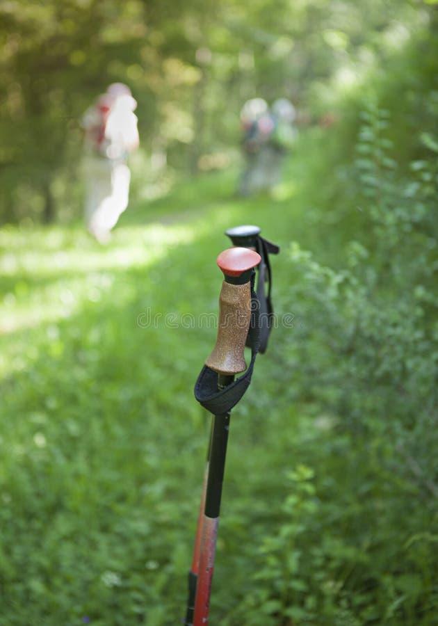 Pinnar för fotvandrare fotografering för bildbyråer