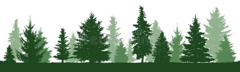 Pino de los árboles, abeto, picea, árbol de navidad Aislado stock de ilustración