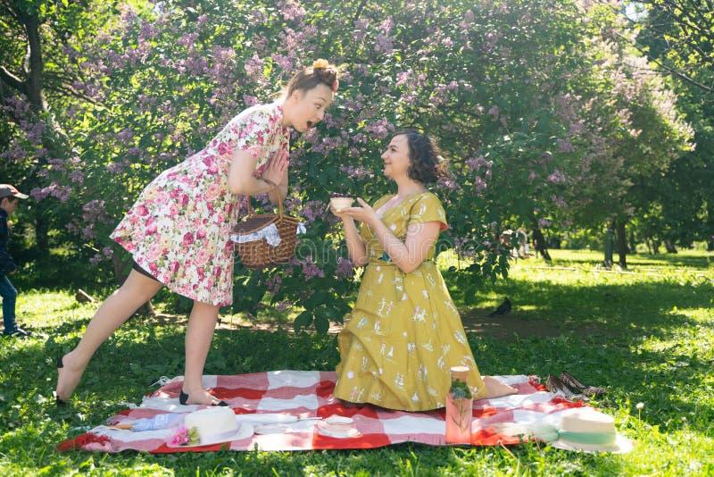 Pino dois bonito acima das senhoras que têm o piquenique agradável no parque da cidade em um dia ensolarado junto os amigos de me foto de stock