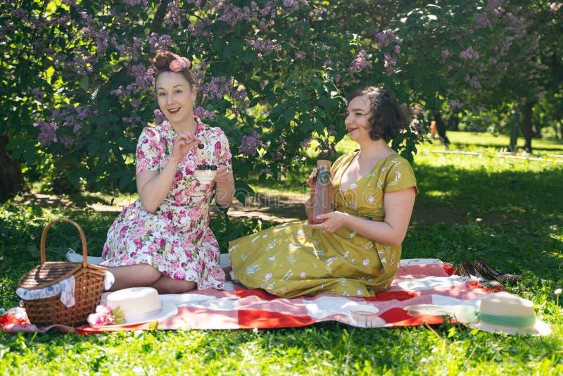 Pino dois bonito acima das senhoras que têm o piquenique agradável no parque da cidade em um dia ensolarado junto os amigos de me imagens de stock royalty free