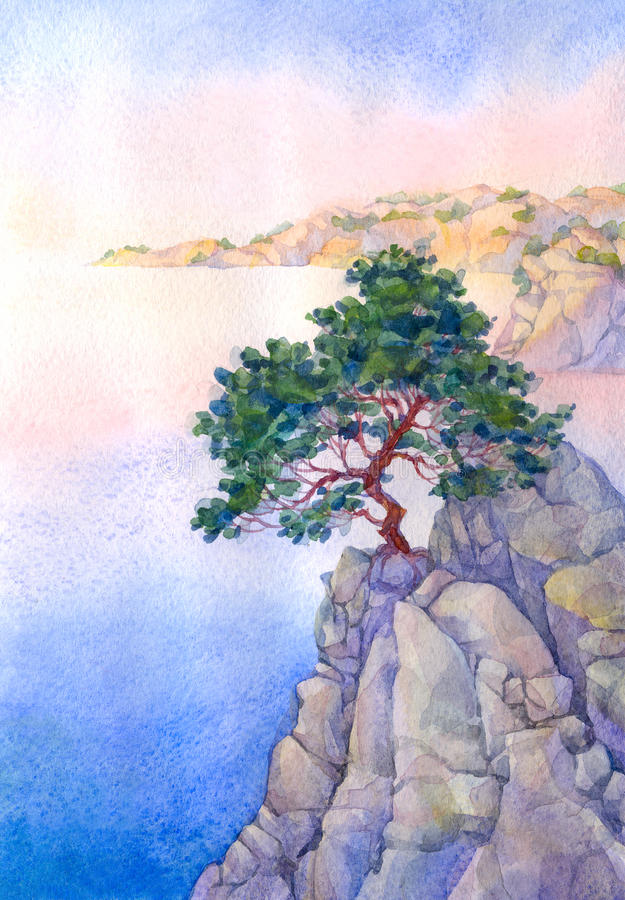Pino en un alto acantilado rocoso sobre el mar fotos de archivo