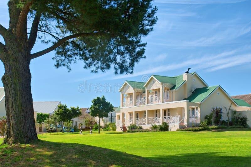 Pino enorme e casa costosa sulla proprietà di golf fotografia stock libera da diritti