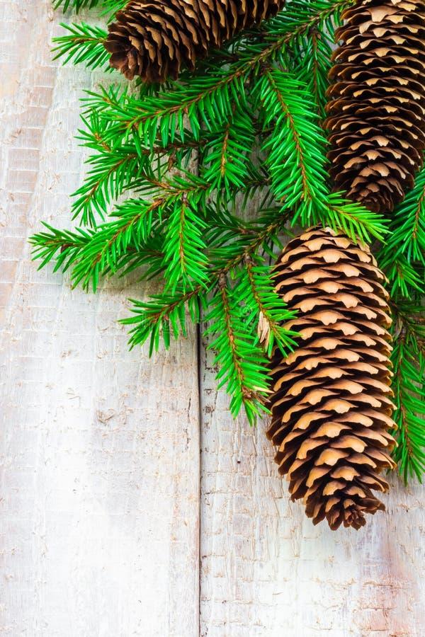 Download Pino Spruce Del árbol De Navidad De Madera Foto de archivo - Imagen de diciembre, celebre: 44853862