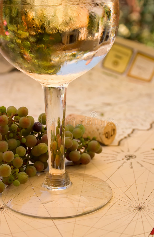 Pinot Grigio Reflections. Grapes and Wine with reflections of grapes and winery royalty free stock images