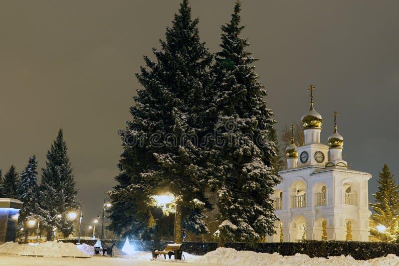 Pins de Noël en hiver dans la ville de nuit photo stock