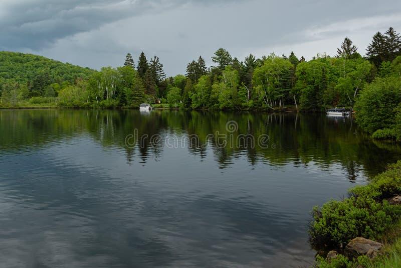 Pins verts avec de belles réflexions dans le lac photographie stock