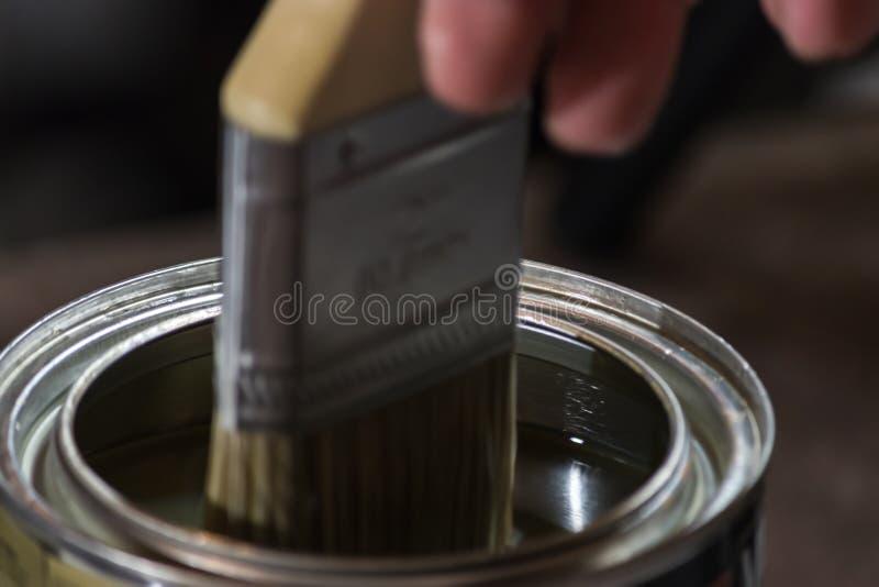 Pinsel tauchte in klare Holzbeize 1 ein stockbilder
