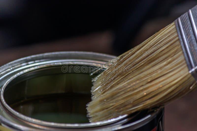 Pinsel tauchte in klare Holzbeize 3 ein stockbilder