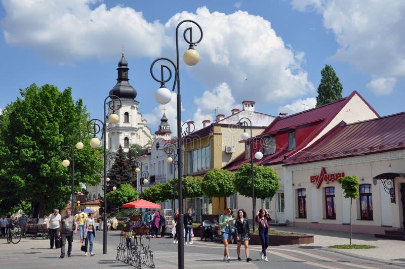 Pinsk Άποψη σχετικά με την εκκλησία της υπόθεσης της ευλογημένης Virgin Mary στοκ εικόνες
