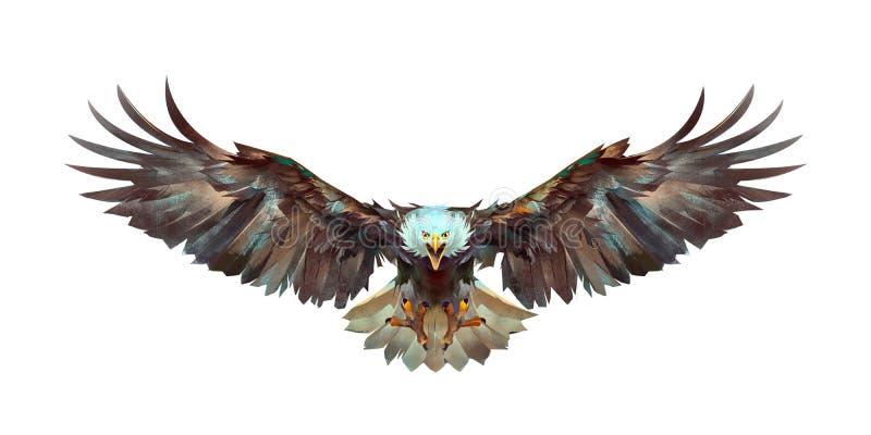 Pintó un águila del vuelo en un frente blanco del fondo
