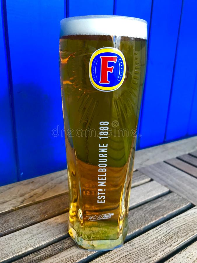 A pint of Fosters royalty free stock image