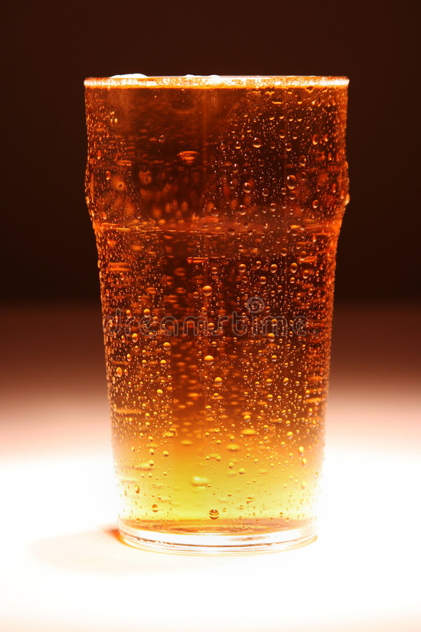 Pint of Lager royalty free stock photos