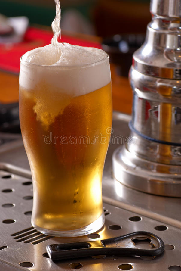 Free Pint Of Lager Stock Photo - 14809890