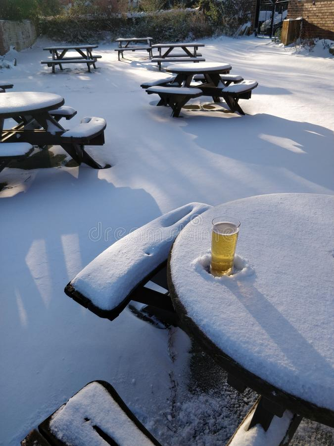 Pint in the snow royalty free stock photo