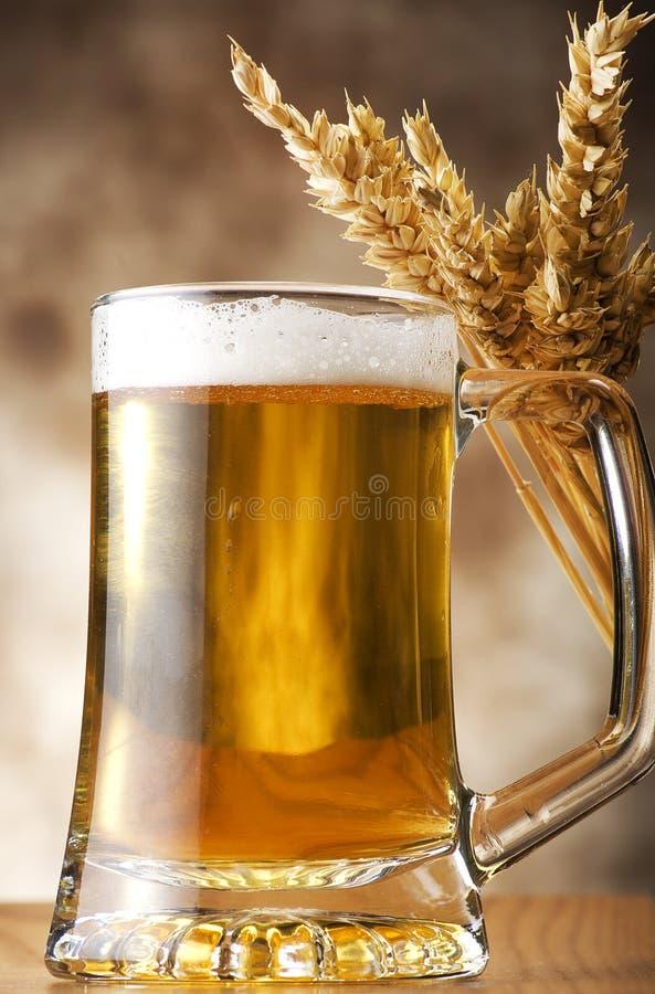 Pinta da cerveja imagem de stock royalty free