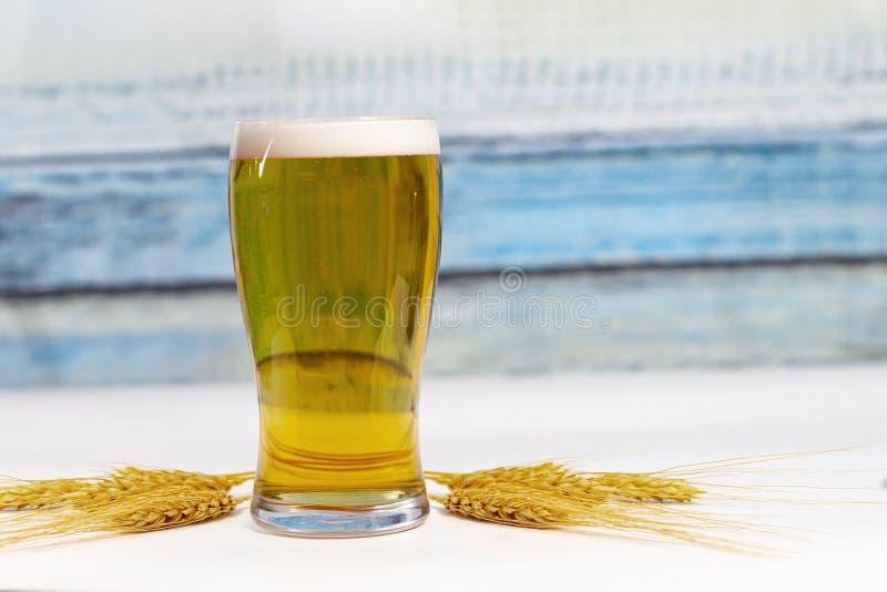 Pinta di birra con orecchi secchi fiori di frumento fotografia stock libera da diritti