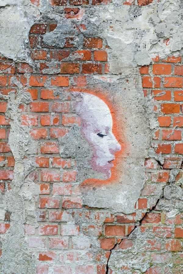 Pintada femenina de la cara en la pared stock de ilustración