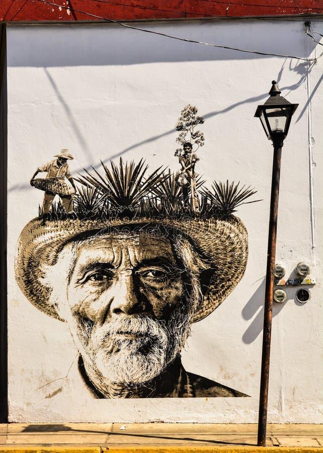 Pintada mexicana imagen de archivo