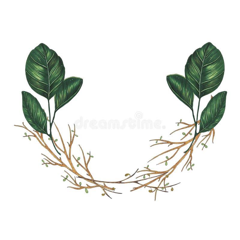 Pintado à mão com a grinalda floral dos marcadores com galho, ramo e as folhas abstratas verdes ilustração royalty free