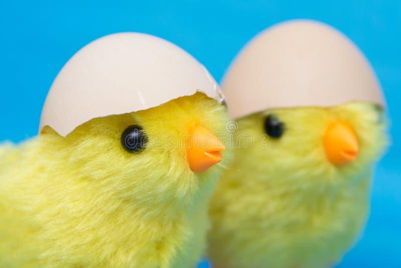 Pintainho de dois bebês e ovo rachado em suas cabeças Pássaros do brinquedo que chocam fora de um shell de ovo foto de stock