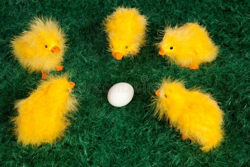 Pintainhos amarelos pequenos bonitos de Easter fotografia de stock royalty free