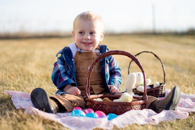 Pintainhos de Easter em uma cesta foto de stock