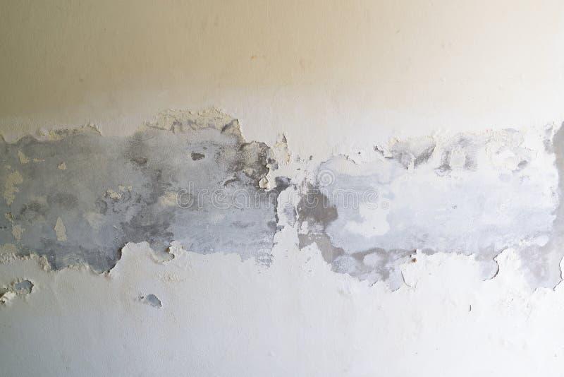 Pinte o descascamento fora do muro de cimento branco fotos de stock