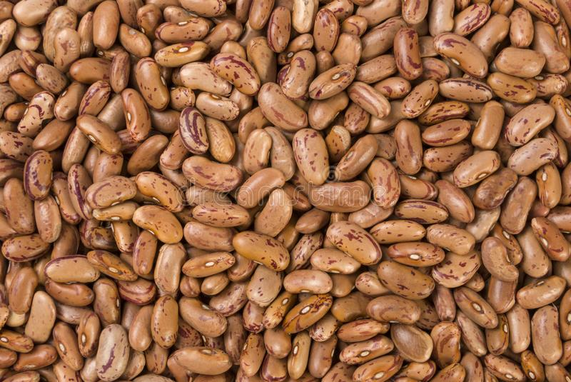 Pinto υπόβαθρο σύστασης φασολιών διατροφή βιο Φυσικό συστατικό τροφίμων στοκ φωτογραφία με δικαίωμα ελεύθερης χρήσης