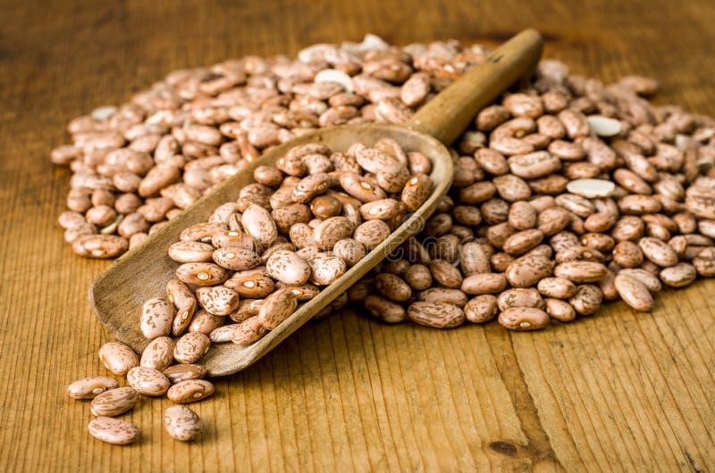 Pinto Beans imagens de stock royalty free