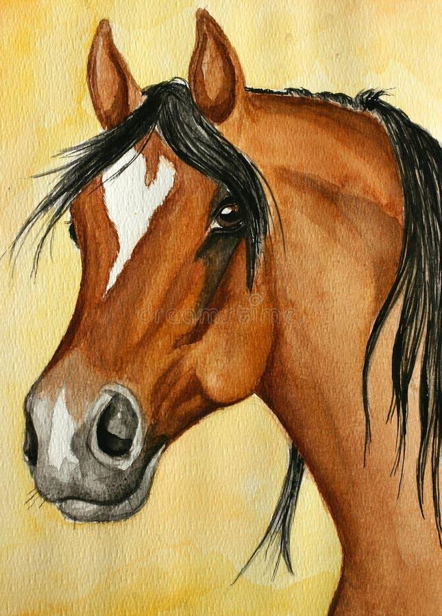 Pintura árabe del caballo stock de ilustración