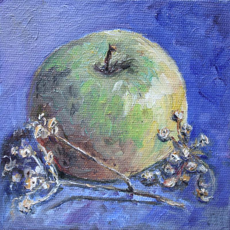 Pintura a óleo de uma maçã verde com tanacetum seco ilustração stock