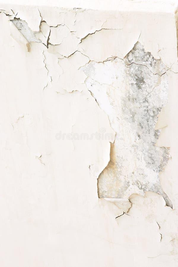 Download Pintura 2 da casca foto de stock. Imagem de lascar, pintura - 107158