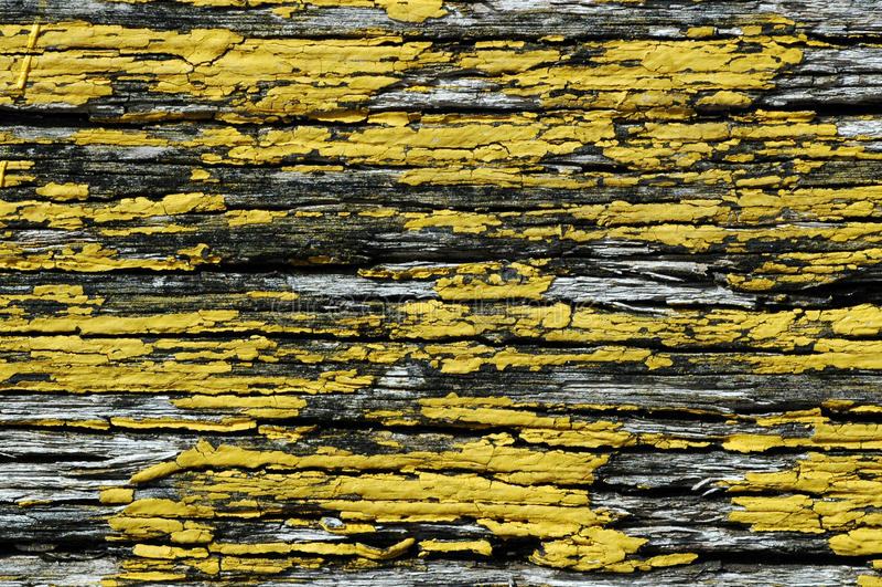 Pintura amarela Flaky na madeira foto de stock royalty free