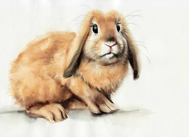 Pintura amarilla de la acuarela del conejito ilustración del vector