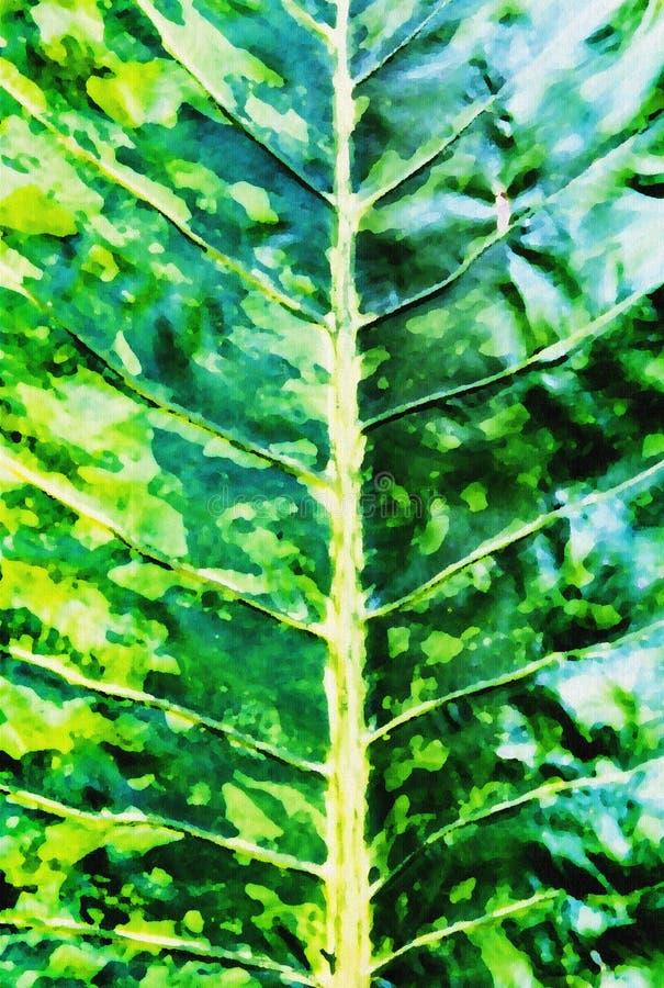 Pintura borrosa un orgánico del fondo verde del leafe imagen de archivo