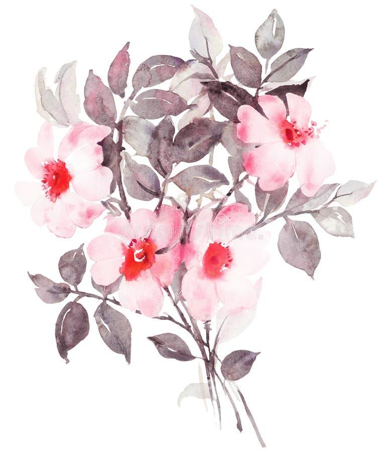 Pintura botánica de la acuarela con el arbusto color de rosa blanco en flor ilustración del vector