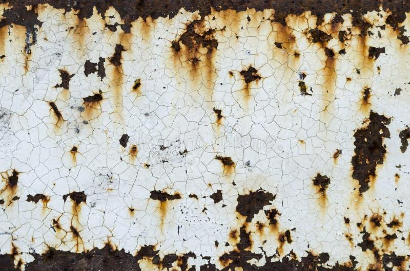 Pintura branca na oxidação imagem de stock