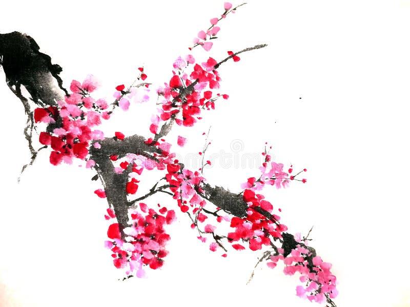 Pintura chinesa ou japonesa da tinta de uma flor de cerejeira imagens de stock royalty free