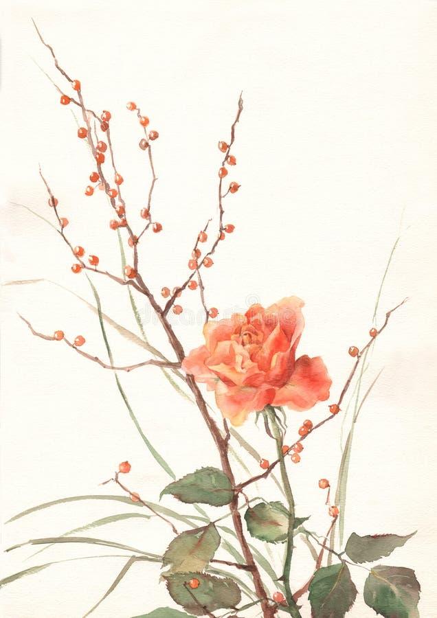 Pintura color de rosa de la acuarela de la naranja ilustración del vector