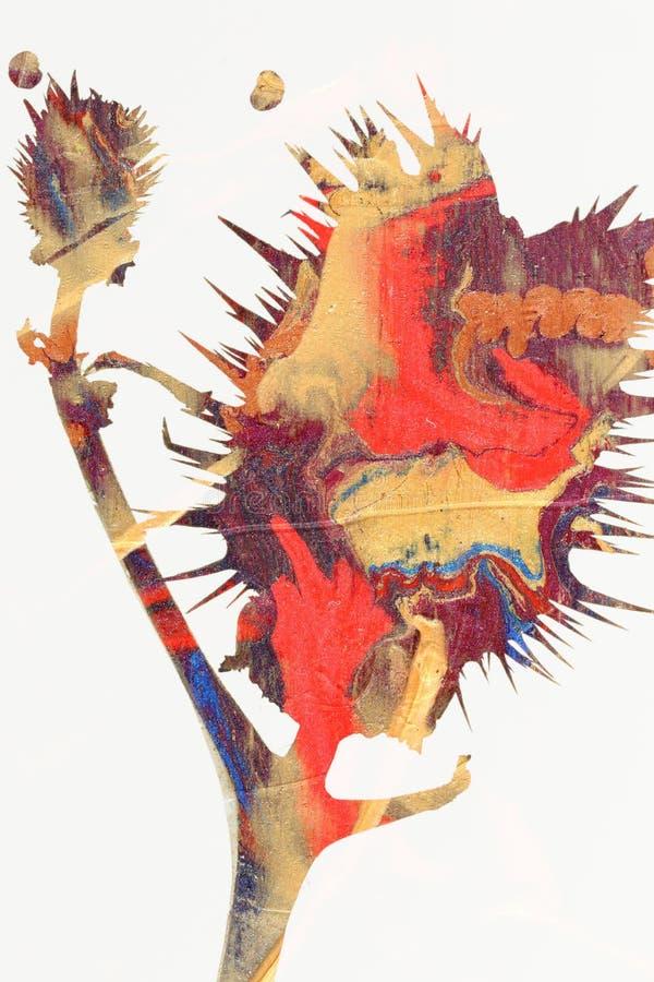 Pintura colorida del cardo imagenes de archivo