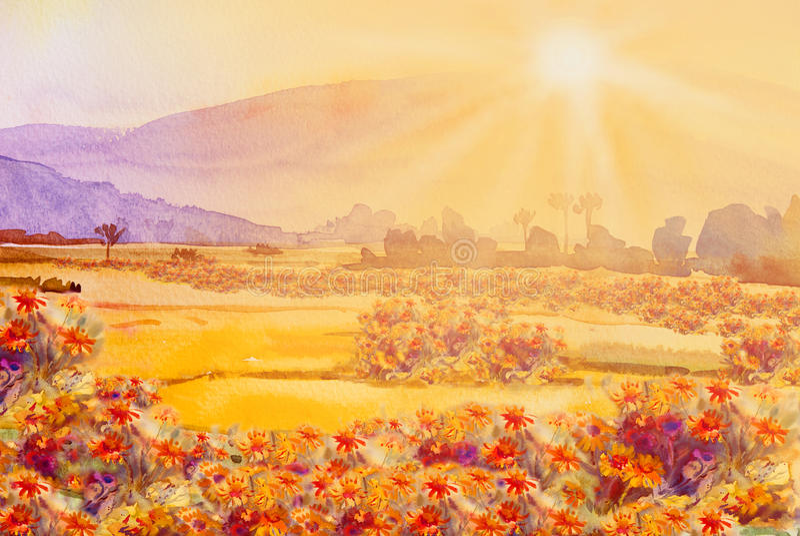 Pintura colorido de wildflower de la margarita y colorido en el sol libre illustration