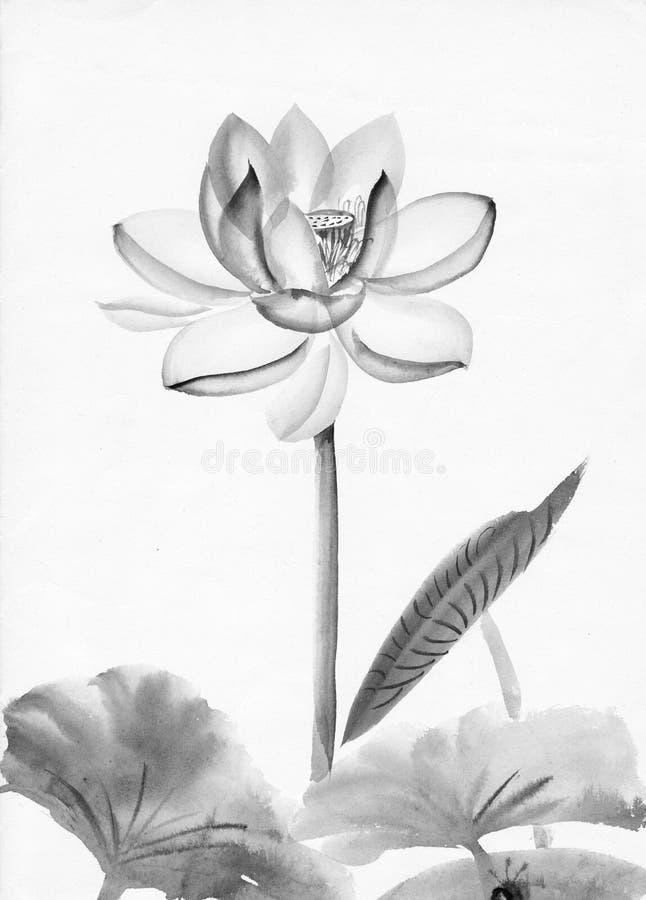 Pintura da aguarela da flor de lótus cor-de-rosa ilustração stock