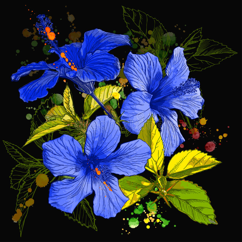 Pintura da aguarela - flor do hibiscus ilustração do vetor