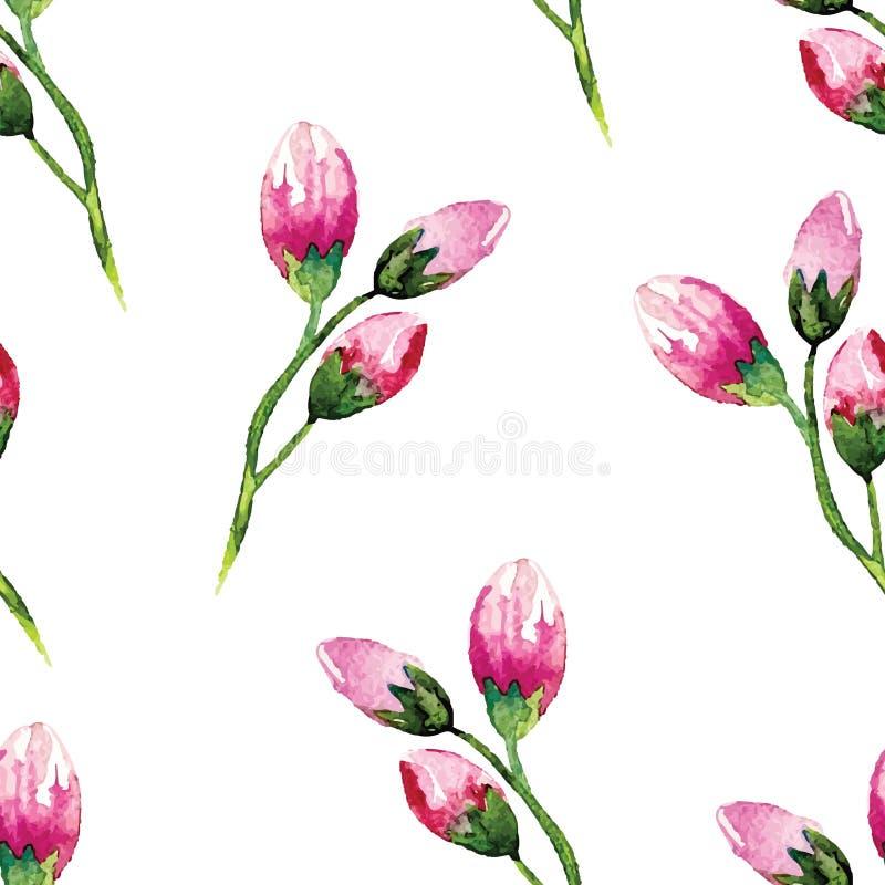 Pintura da aquarela com flores de Rosa seamless ilustração royalty free
